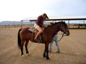 Rüyada At Çiftliği Görmek