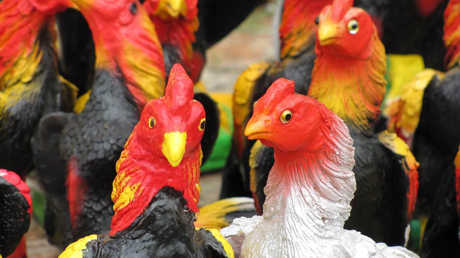 Rüyada Kümeste Tavuk ve Horoz Görmek