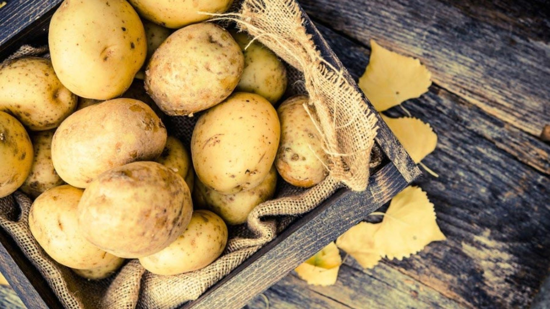 Rüyada Topraktan Patates Soğan Çıkarmak