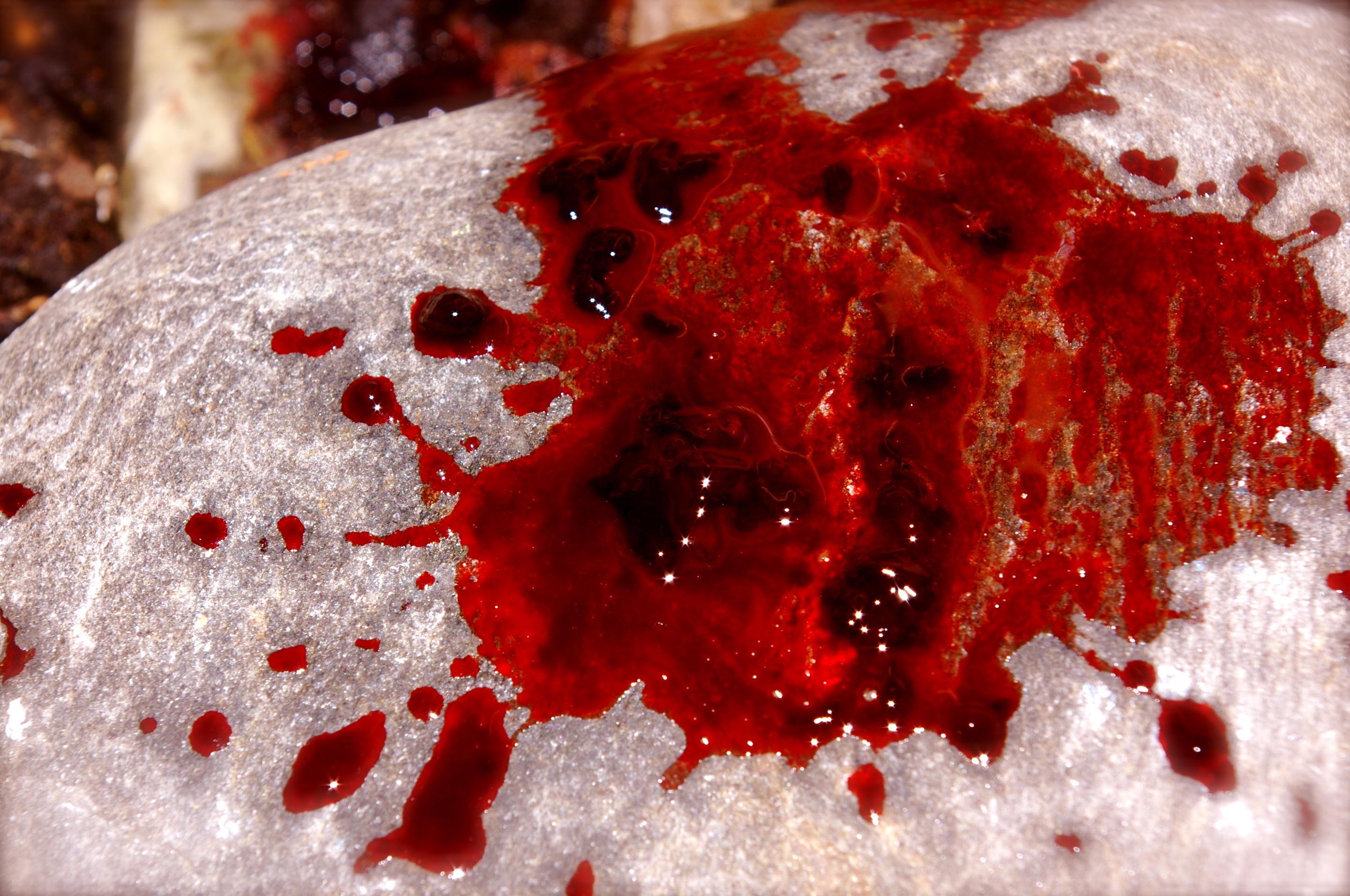 Rüyada Tuvalette Adet Kanı Görmek