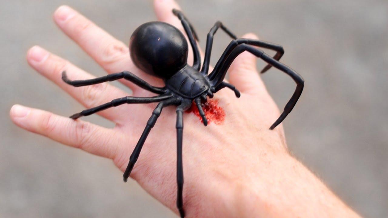 Rüyada Siyah Büyük Örümcek Görmek