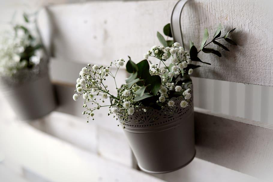 Rüyada Saksıda Beyaz Çiçek Görmek