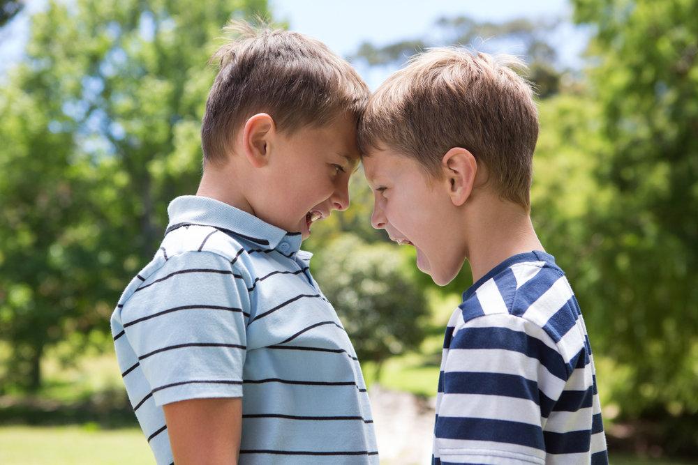 Rüyada İki Kardeşin Kavga Etmesi