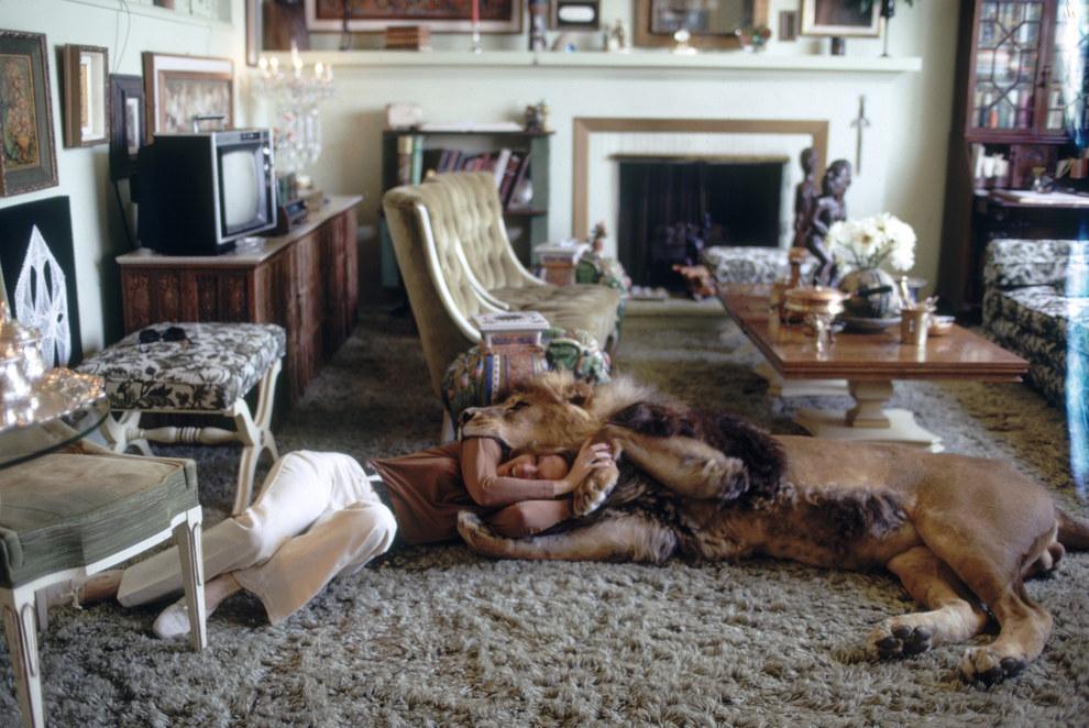 Rüyada Evde Aslan Görmek